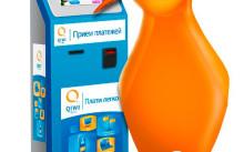 Способы заработка в интернете на киви кошельке