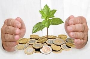 Растение и монеты