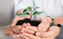 Чем можно заняться в малом бизнесе: лучшие идеи для развития своего дела