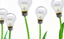 Растения лампочки